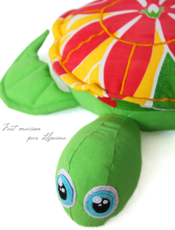 tortue02