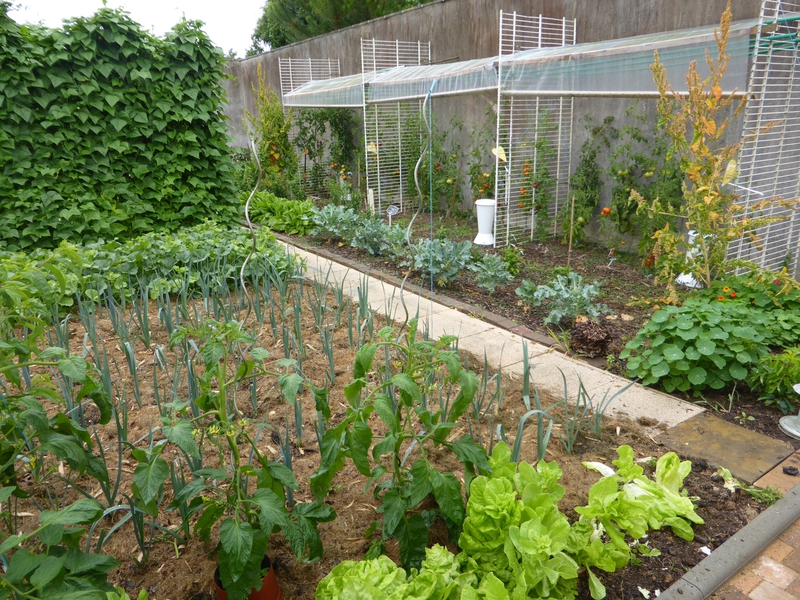 8-jardin (1)