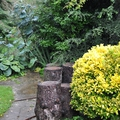 Sur la route des vacances : jardin n°4