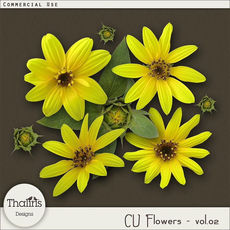 THLD-CU-flowers-vol2-pv