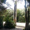 Lussan Menhir de la Pierre Plantée 8