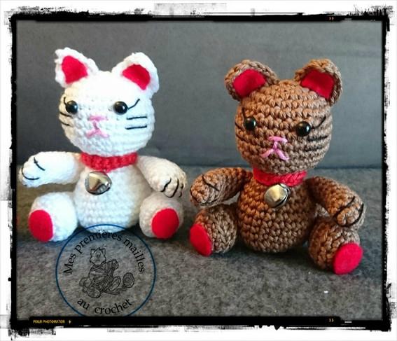 petits chats 04