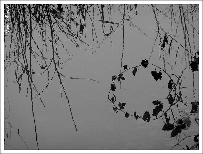 2013_01_05-P1150022