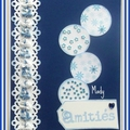 7 Echange avec Roseline Bleu Blanc