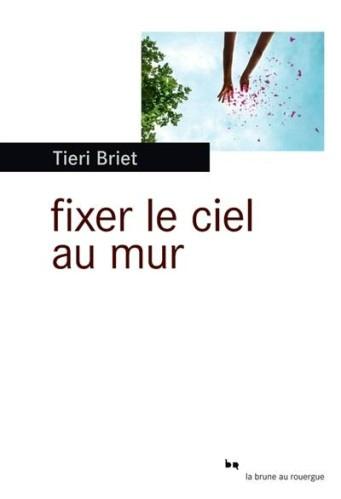 Briet-Fixer-le-ciel-au-mur