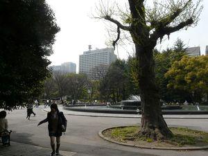 Canalblog_Tokyo03_19_Avril_2010_019