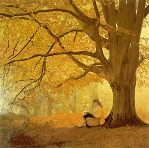 solitude_autumn