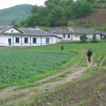 Coree du nord - kaesong - ferme collective