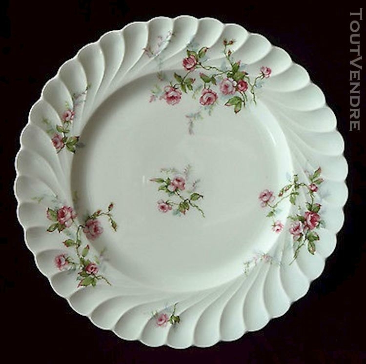assiette-de-service-porcelaine-de-limoges-haviland-decor-20160413190235