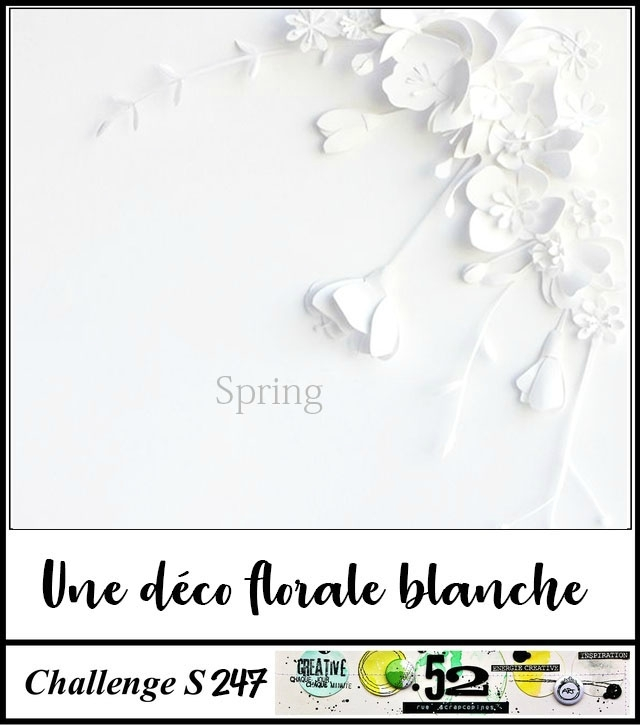 S247 Fleurs blanches