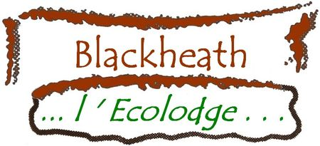black_ecolodge_titr