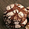 Biscuits au chocolat de martha steward