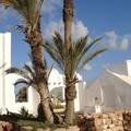 Oxala House - Jardins