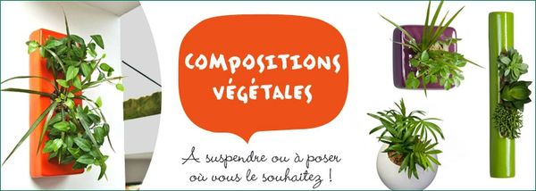 778x278_compositions-vegetales