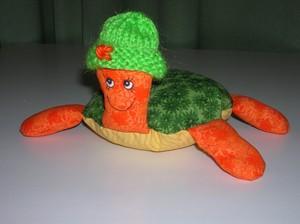 Miss_Turtle