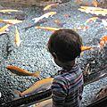 Changer d'avis sur l'aquarium de paris (cineaqua)