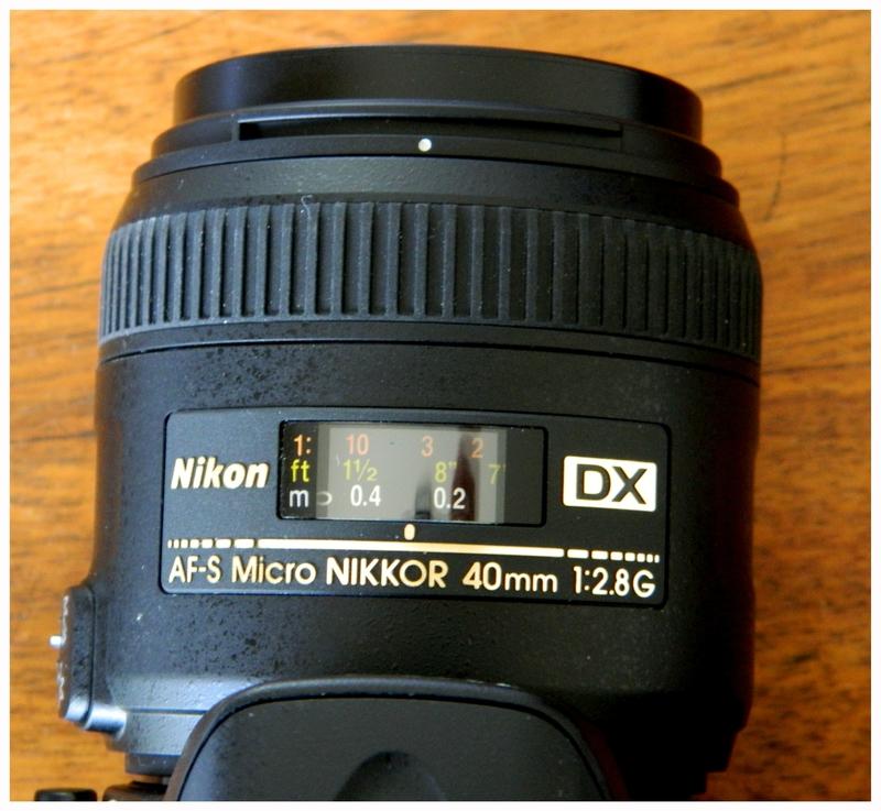 DSCN2689a