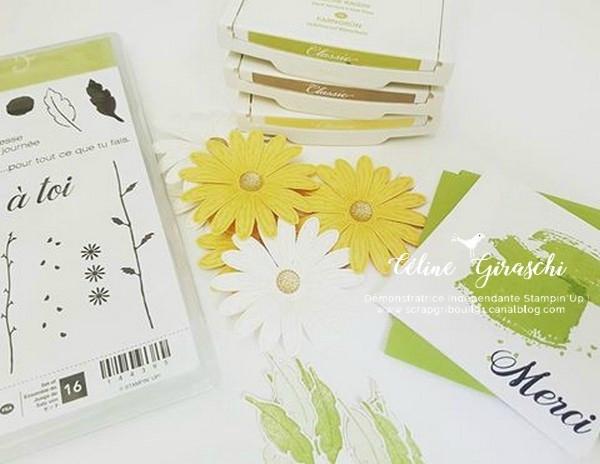 Carte Marguerite -4