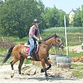 Jeux équestres manchots 2013 (178)