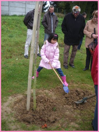 mon arbre3