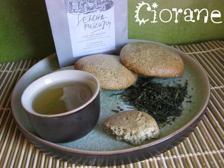 biscuit-the-sencha-fukuyu