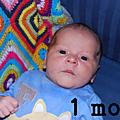 1 mois