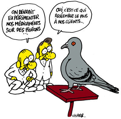 charb_270613_experimentation