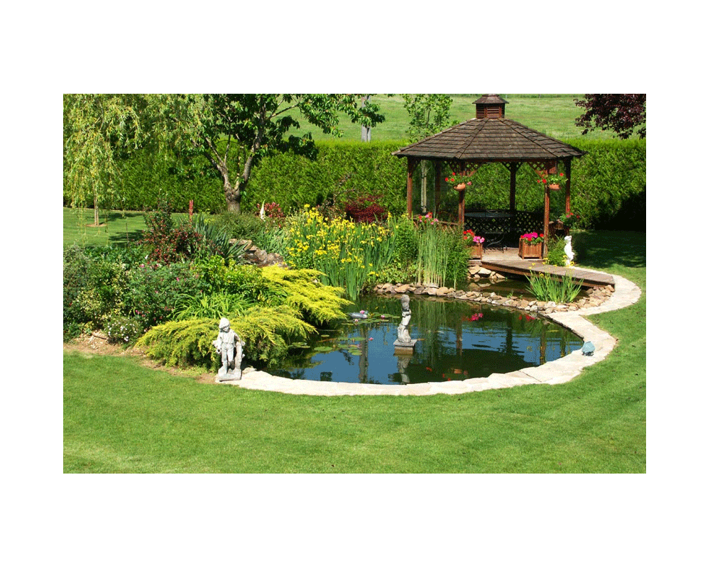 Comment decorer son bassin de jardin for Bassins de jardin photos