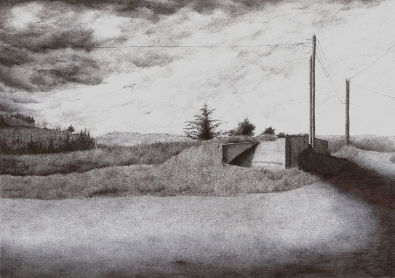 Wasteland, Pierre, stylo bille sur papier, 11,4x22,8, 2014