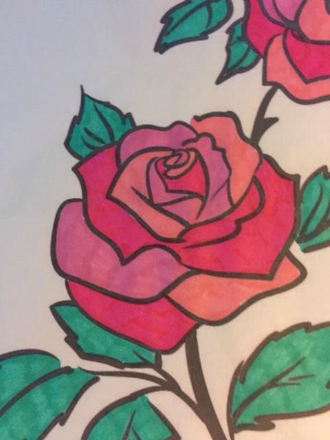 La beauté de la rose par le coloriage