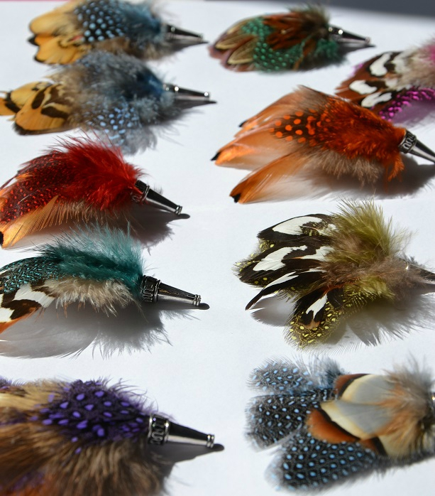 Broches plumes