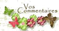 VosCommentaires