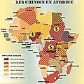 Les_Chinois_en_Afrique__une_carte