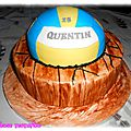 Gâteau volley ball