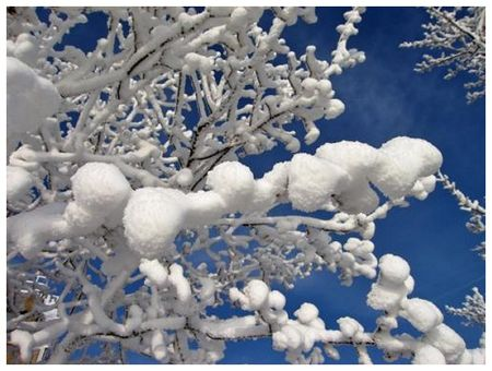 neige2_medium