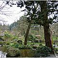 2011_03_19-P1010241