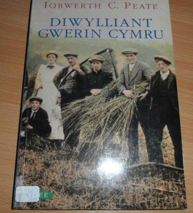Diwylliant gwerin Cymru 2
