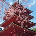 Base : architecture japonaise