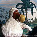 Dodu dodo à la télévision