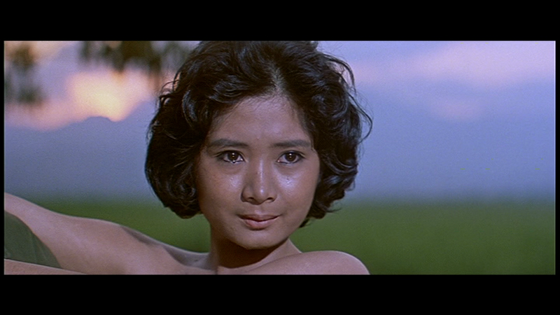 SF merrill's marauders