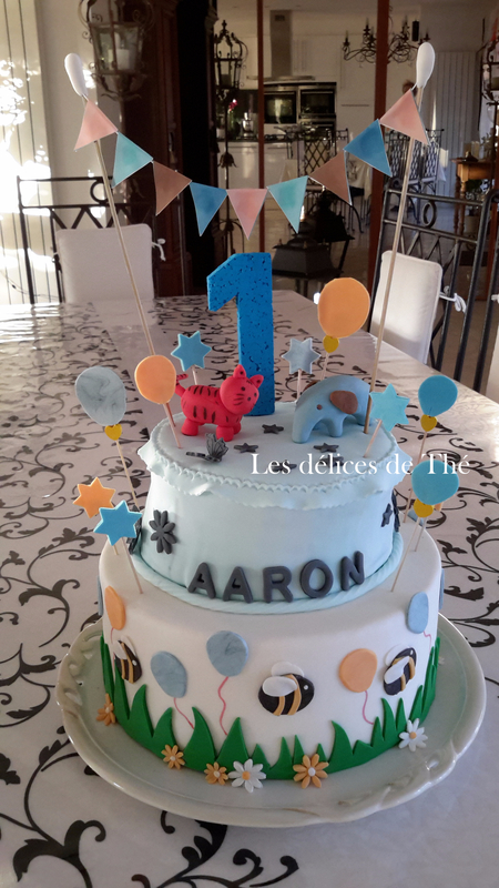 Anniv Aaron 1 an Nov 2017 (18)