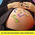 Grossesse : 9ème mois / homéopathie, tisane / maison de naissance / fleurs de bach : red chestnut & variées