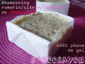Shampoing_avec_phase_de_gel