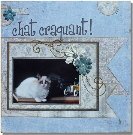 Chat-craquant