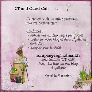 CT_CALL_fr_ScrapAnges