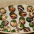 Escargots du jardin à la bourguignonne