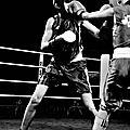 9910 la boxe féminine au demi finale de leffrinckoucke