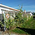Juillet 2010 Mariage Blandine-Oléron-Gap 581
