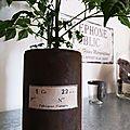 Pot rouillé chiné, étiquette papier ciré