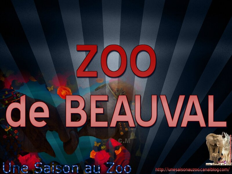 - ZOO de BEAUVAL